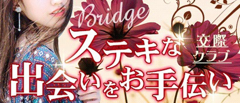 Bridgeの求人