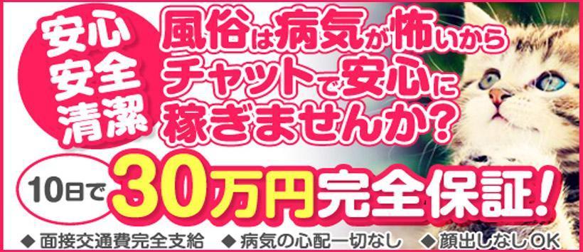 チャットポイント 船橋・津田沼店の求人