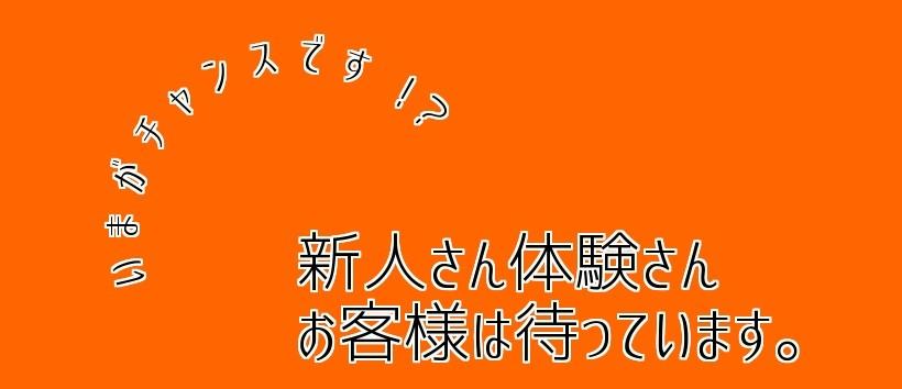 浜松素人クラブ シトラス