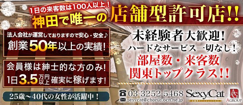 セクシーキャット神田店の求人