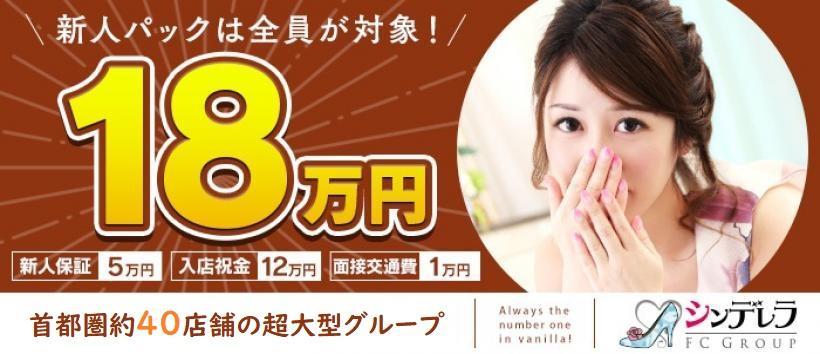 新橋・汐留人妻ヒットパレードの求人