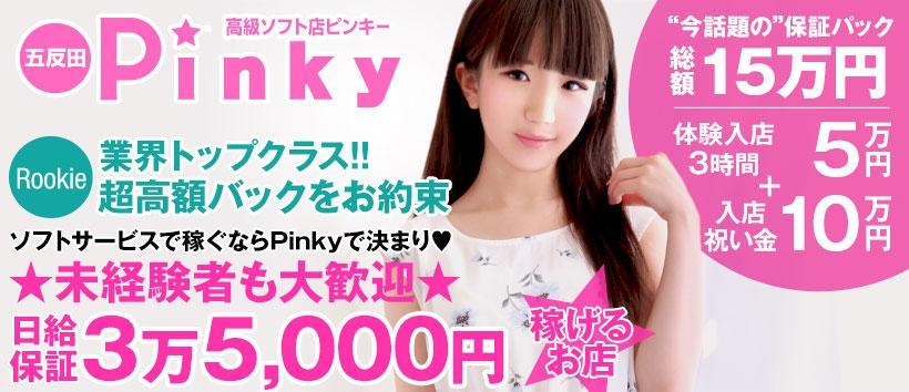 Pinkyの求人