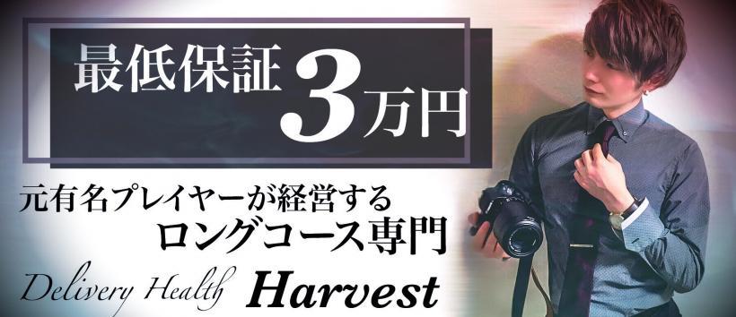 Harvestの求人
