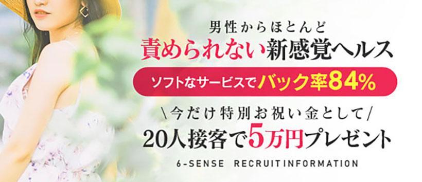 6-SENSEの求人